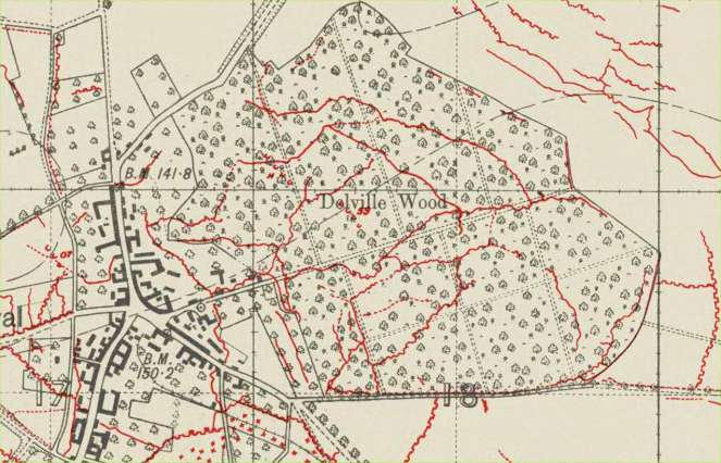 Map of Delville Wood, 31 July 1916
