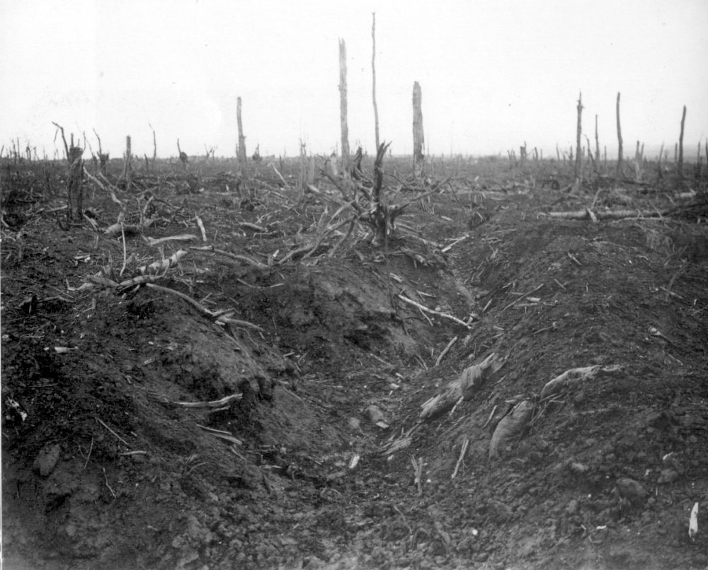 An abandoned German trench in Delville Wood, September 1916