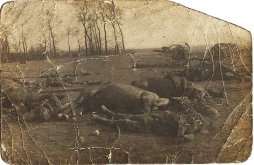 Dead British soldiers left on the battlefield after the Battle of Le Cateau (1914)